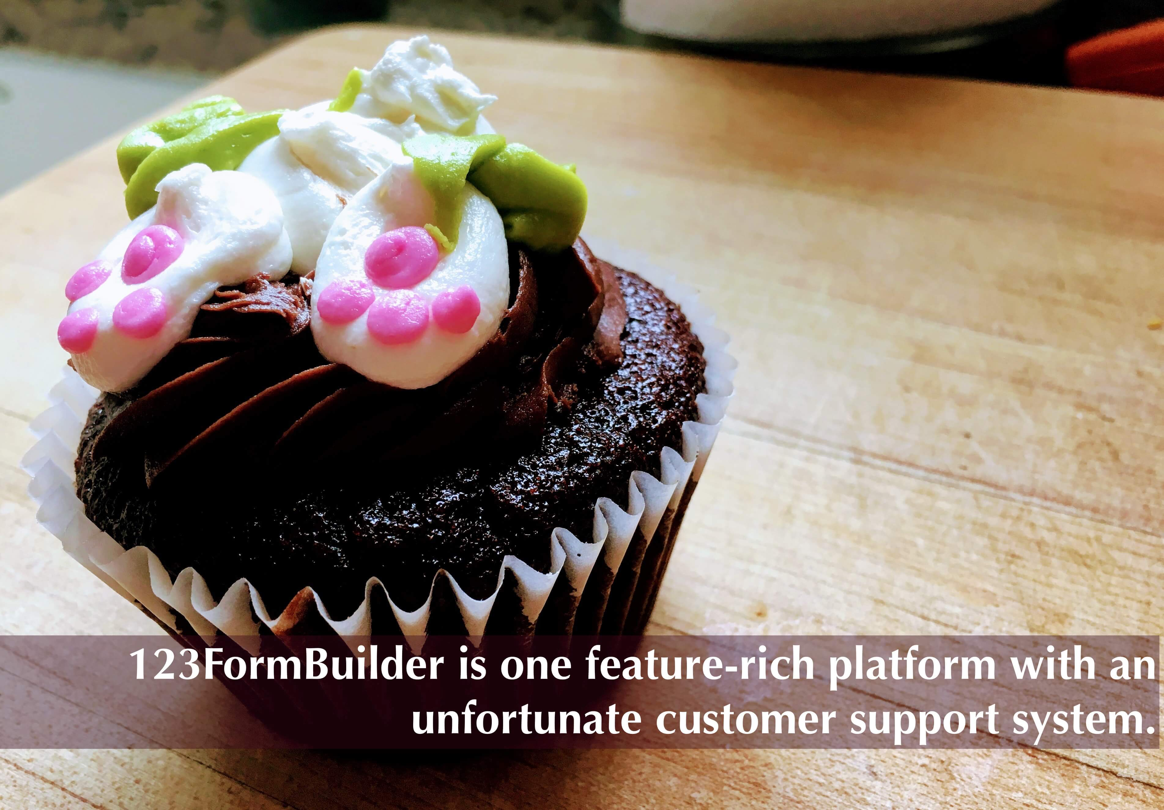 123FormBuilder is one feature-rich platform with an unfortunate customer support system.