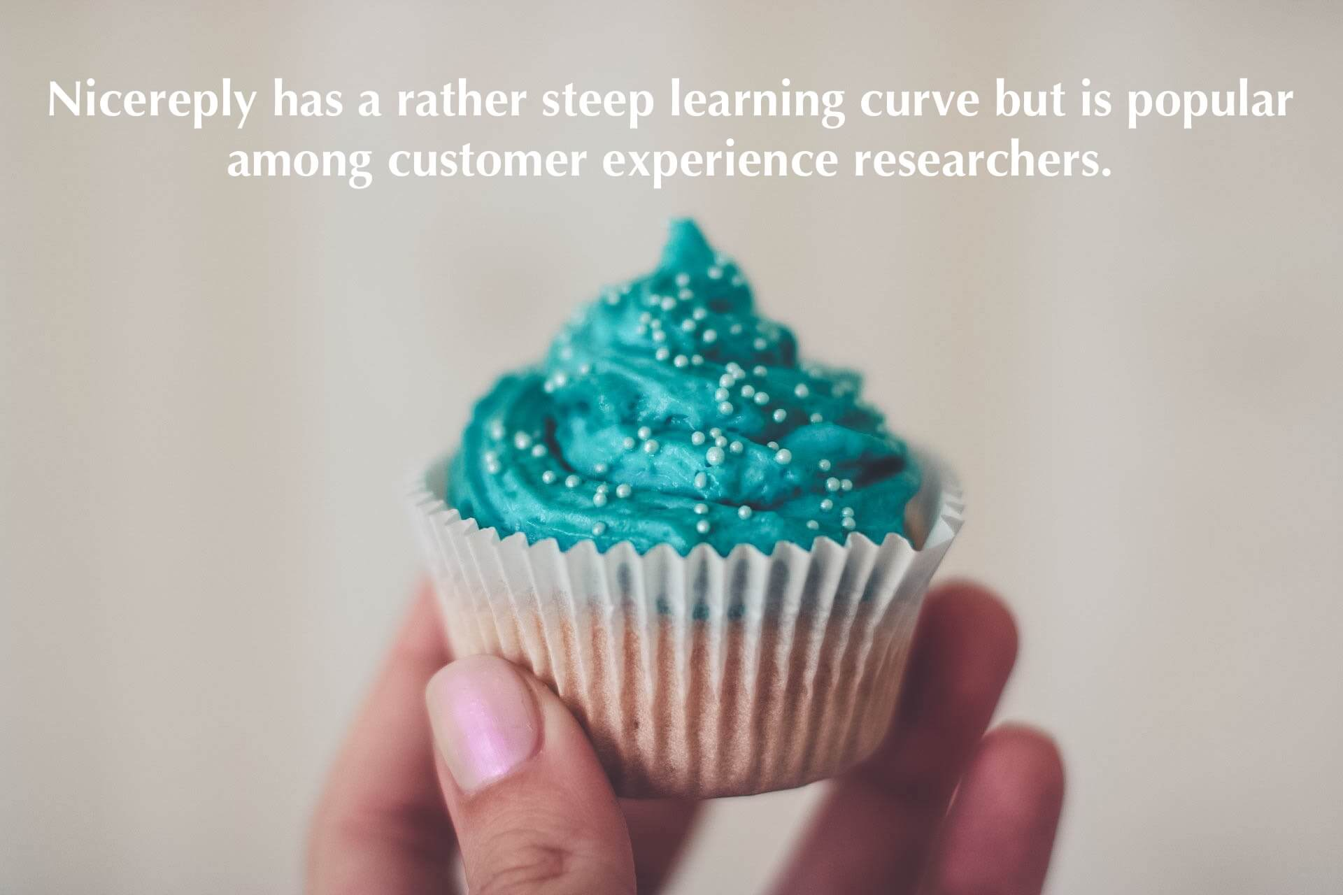 Nicereply has a rather steep learning curve but is popular among customer experience researchers.