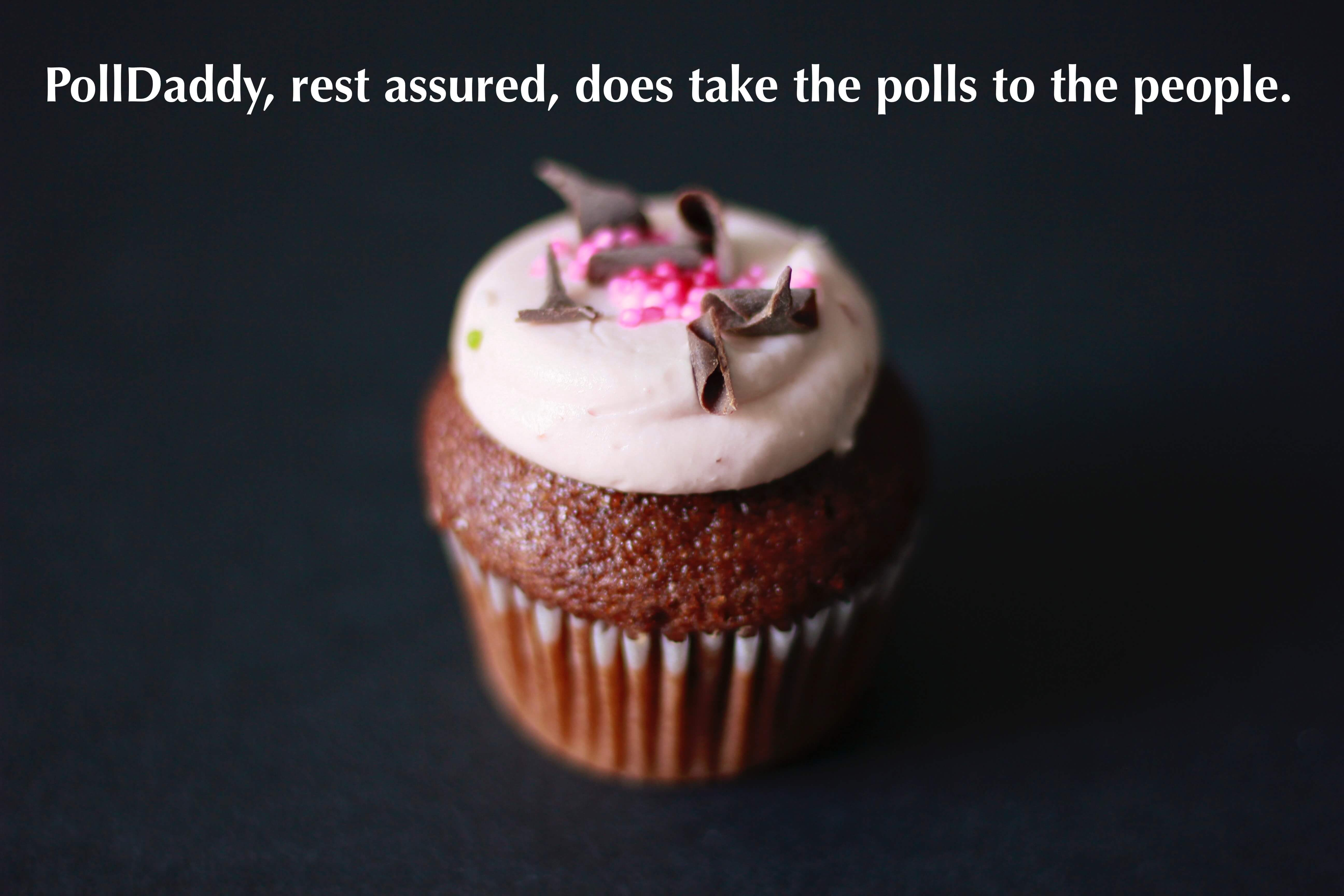 PollDaddy, rest assured, does take the polls to the people. It is one of the best online survey apps out there.