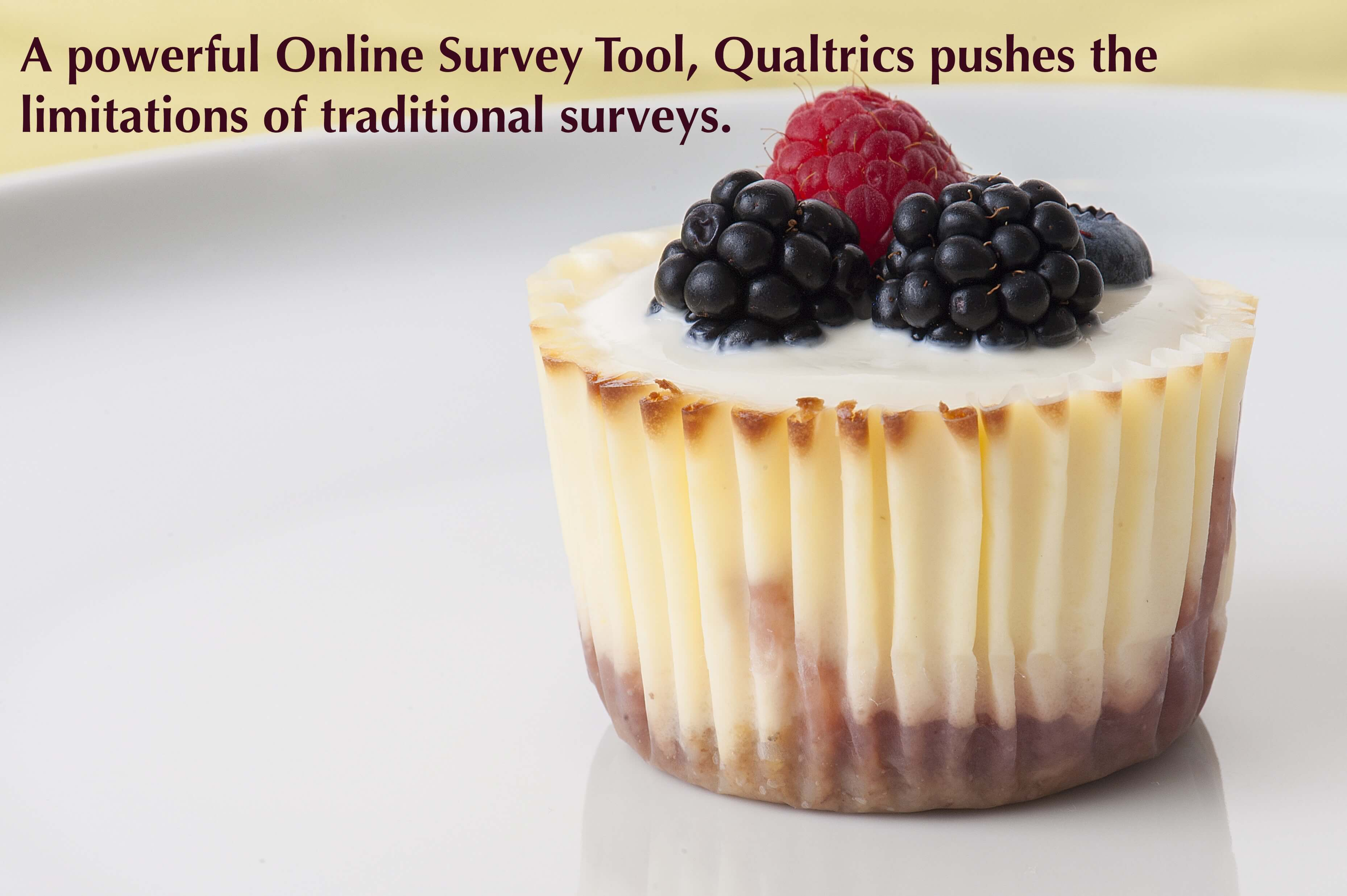 A powerful Online Survey Tool, Qualtrics pushes the limitations of traditional surveys.