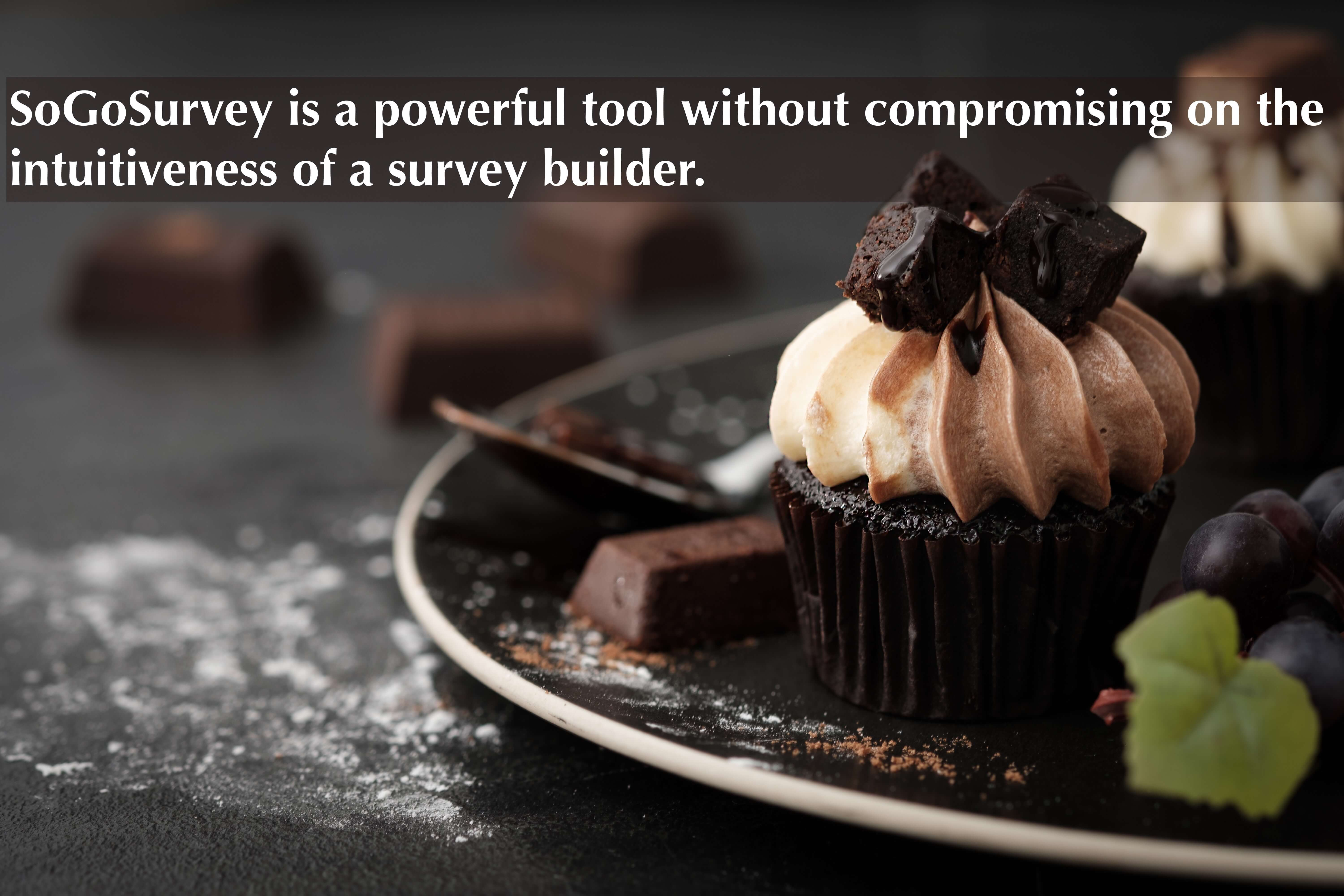 SoGoSurvey is a powerful tool without compromising on the intuitiveness of a survey builder.