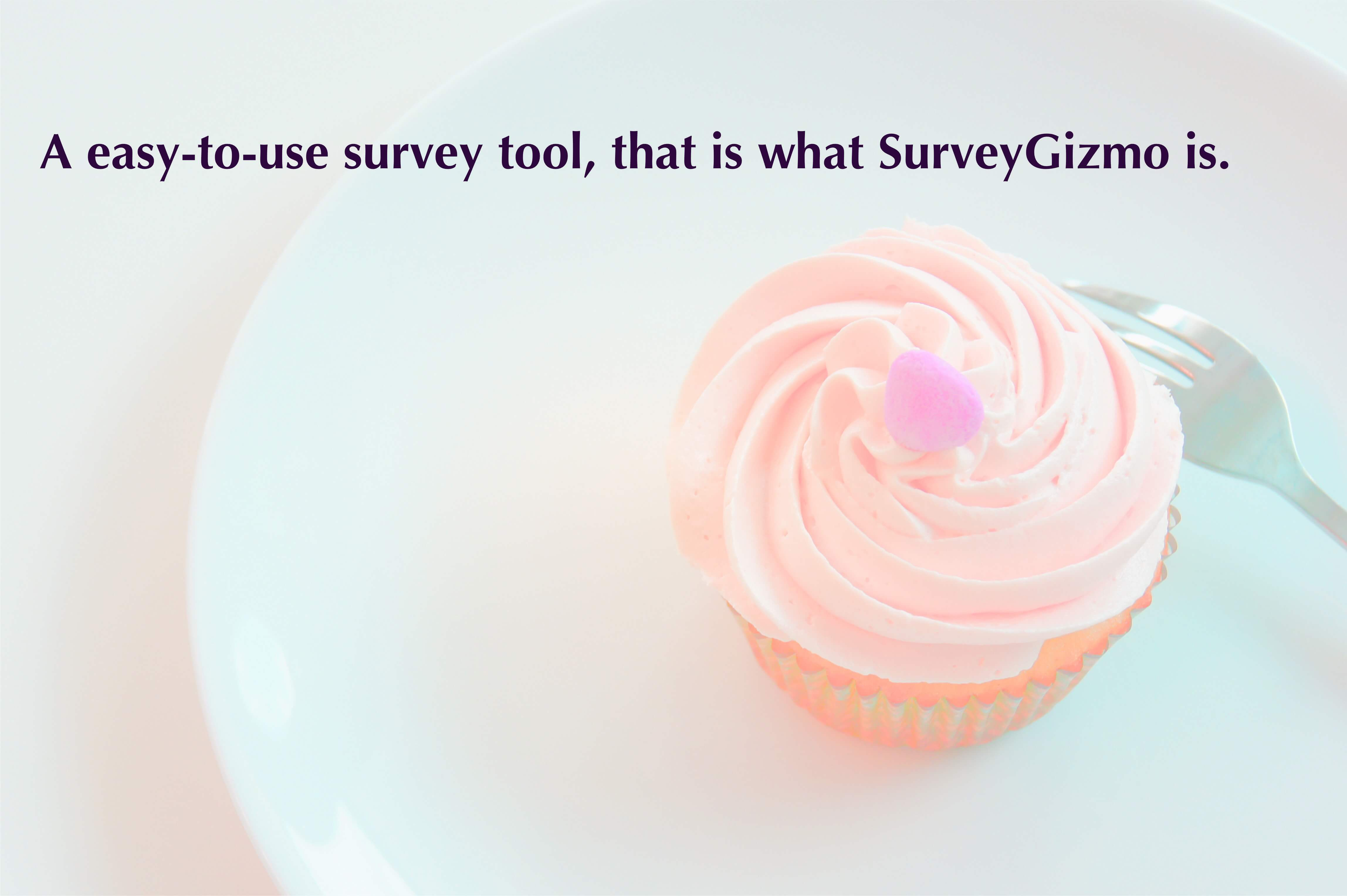 A easy-to-use survey tool, that is what SurveyGizmo is. No wonder it is one of the best online survey tools