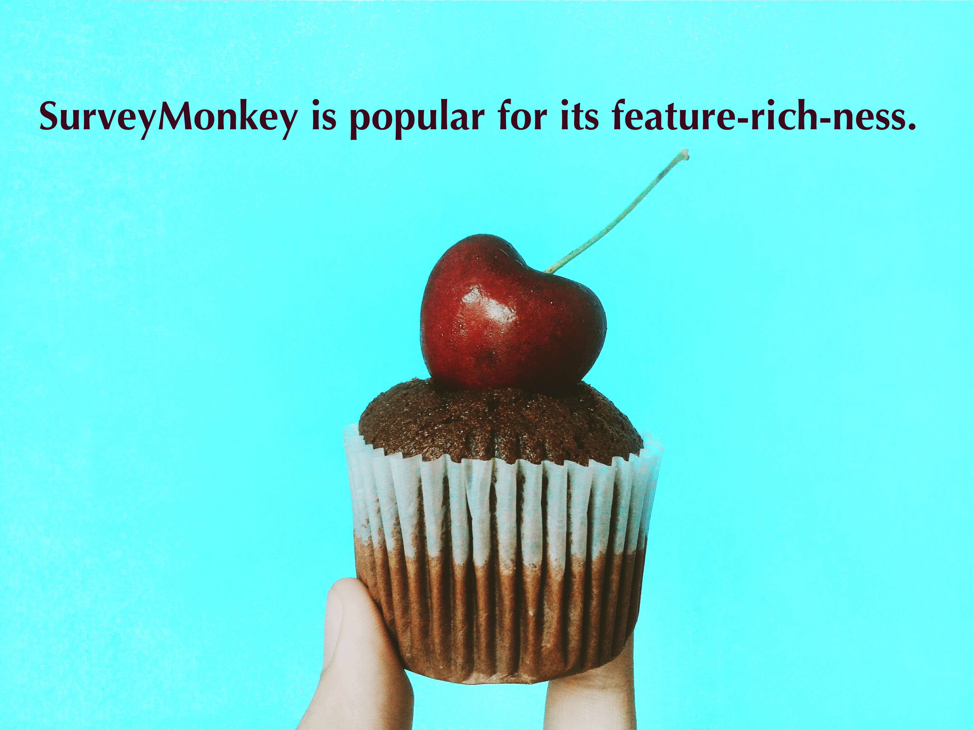 SurveyMonkey is popular for its feature-rich-ness.