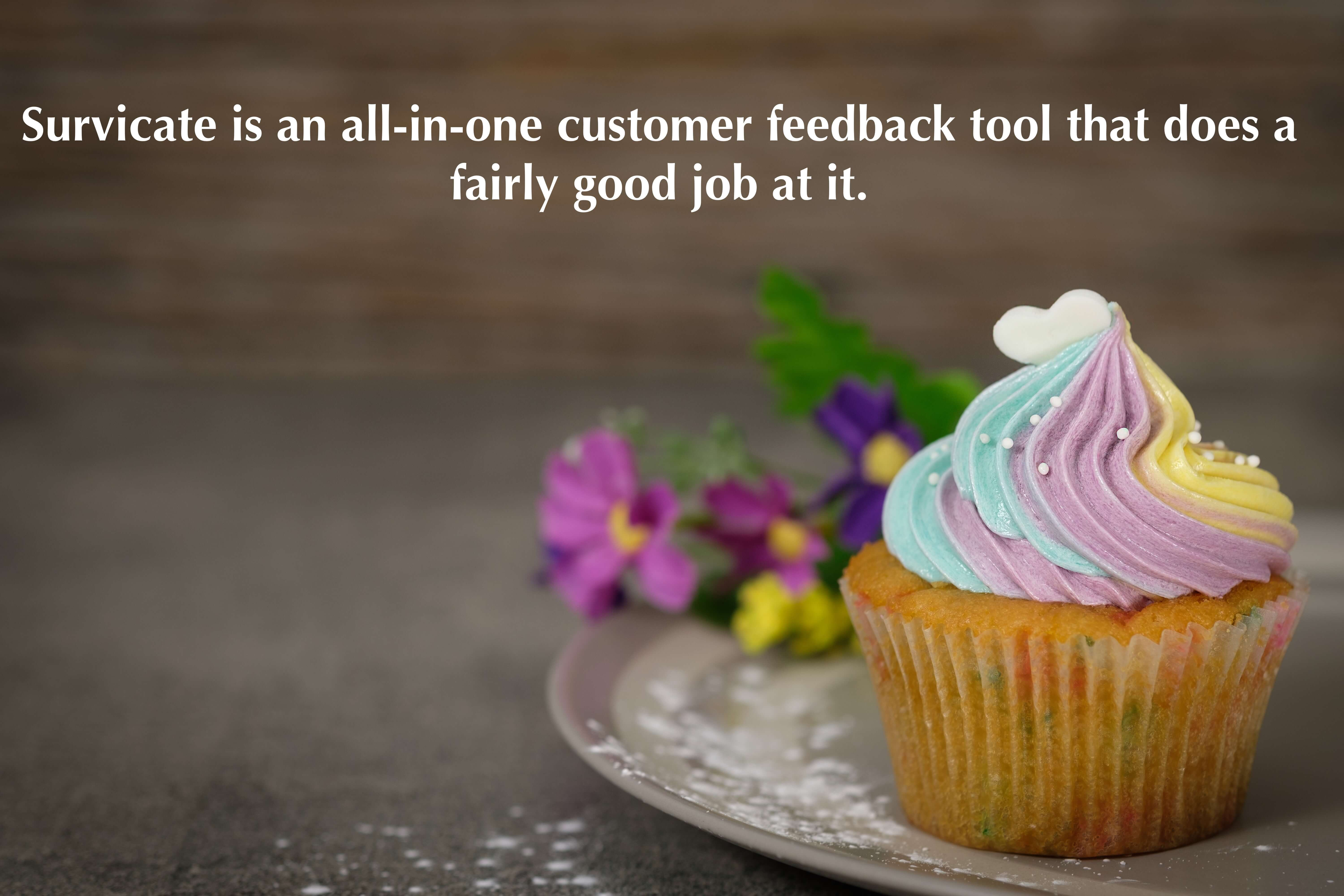 Survicate is an all-in-one customer feedback tool that does a fairly good job at it.