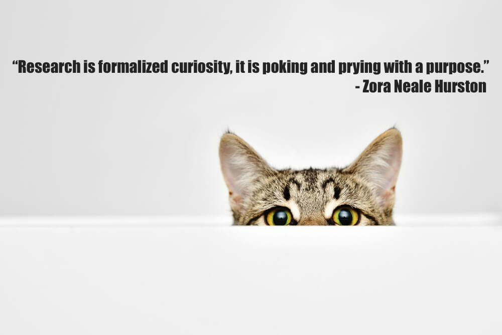 Research is formalized curiosity, it is poking and prying with a purpose.