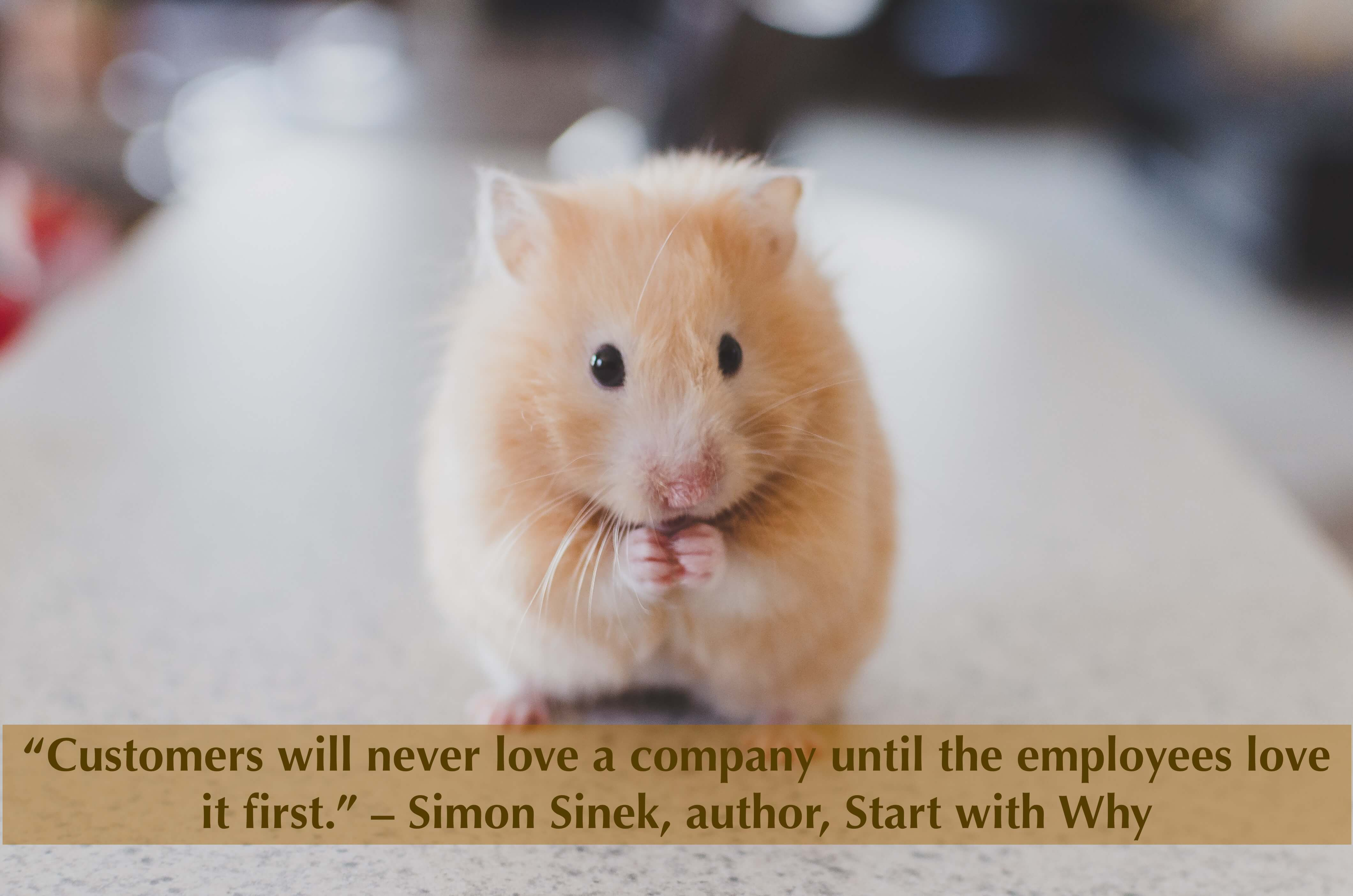 """Customers will never love a company until the employees love it first."" – Simon Sinek, author, Start with Why"