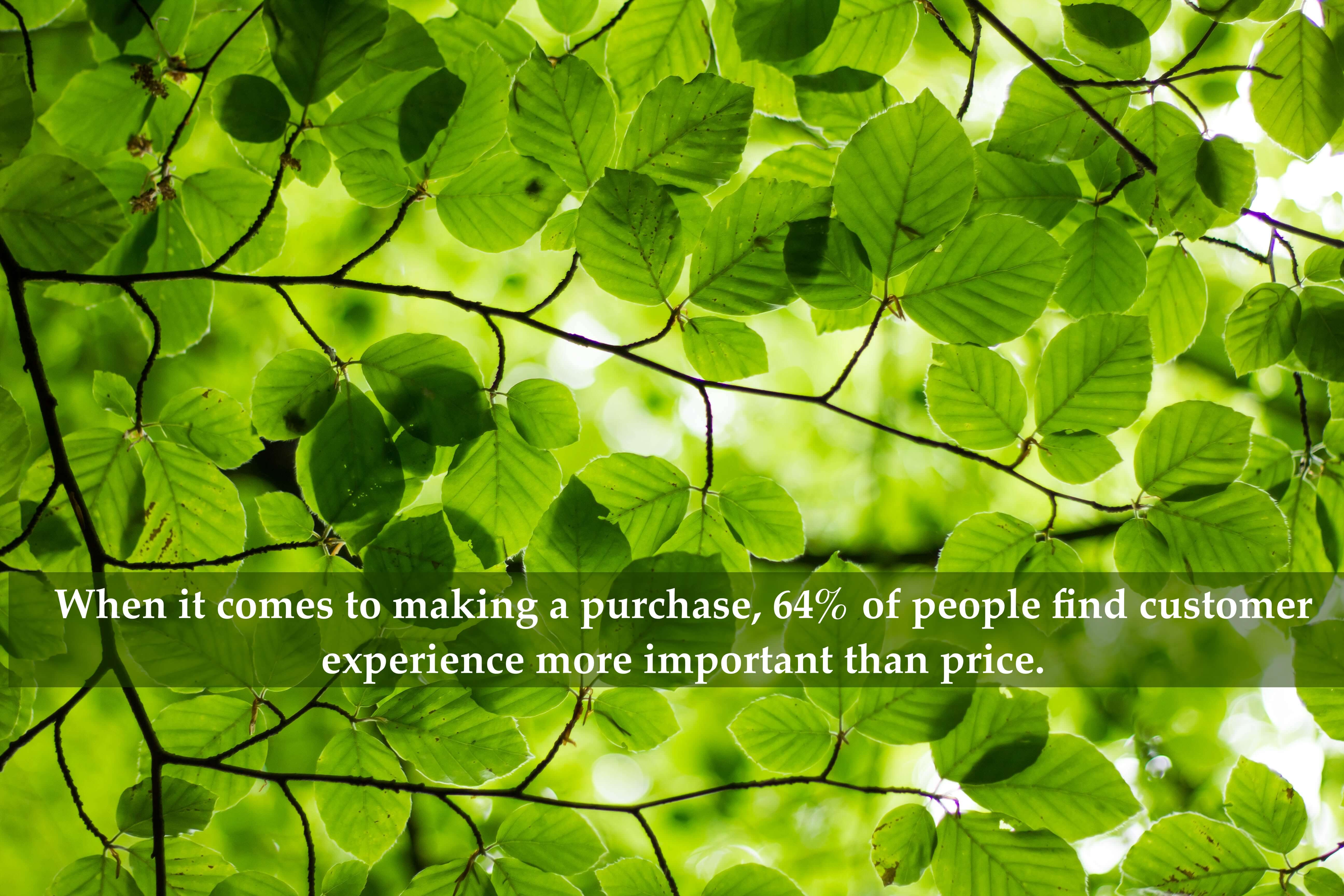 When it comes to making a purchase, 64% of people find customer experience more important than price.