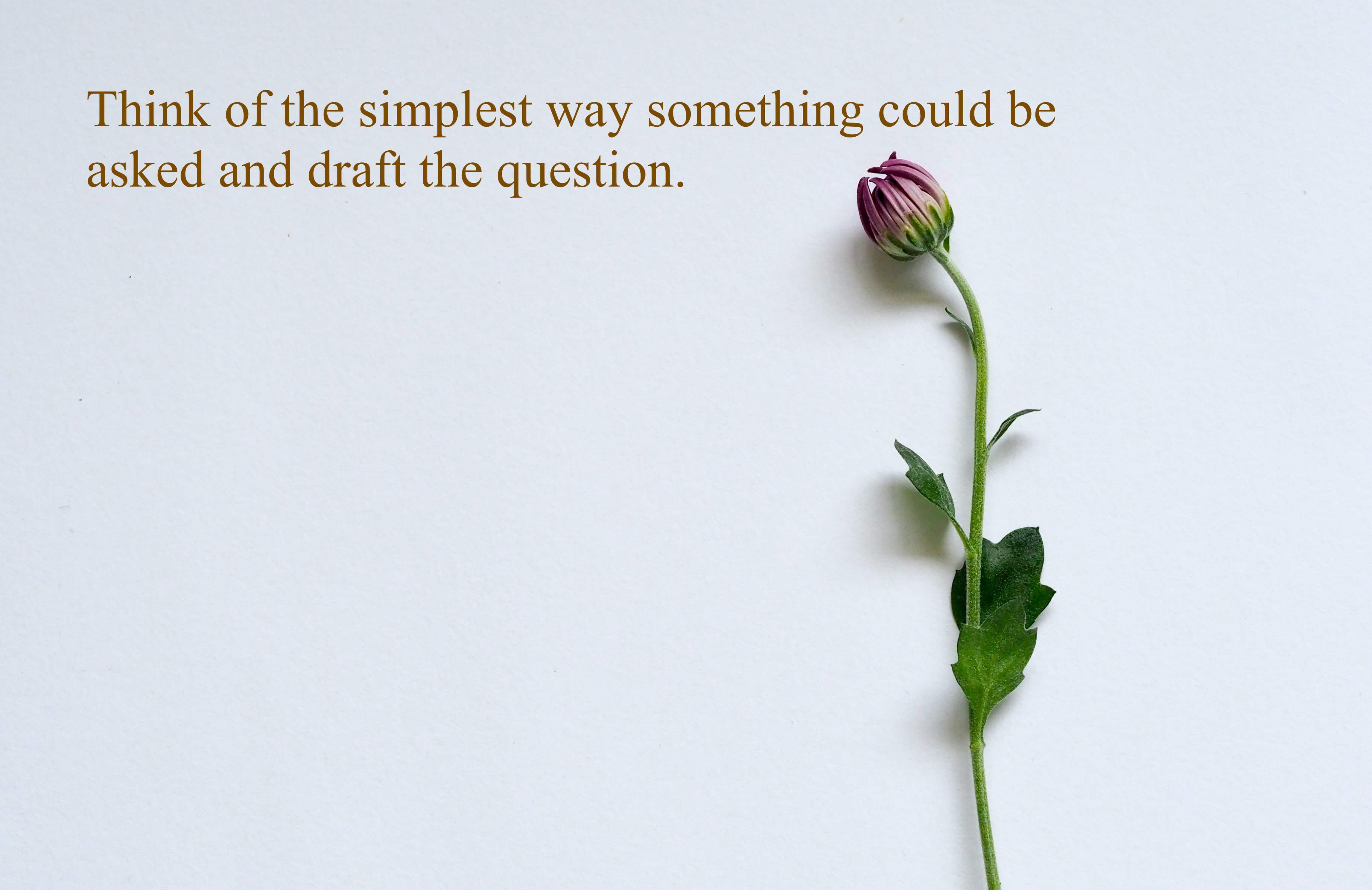 Think of the simplest way something could be asked and draft the question.
