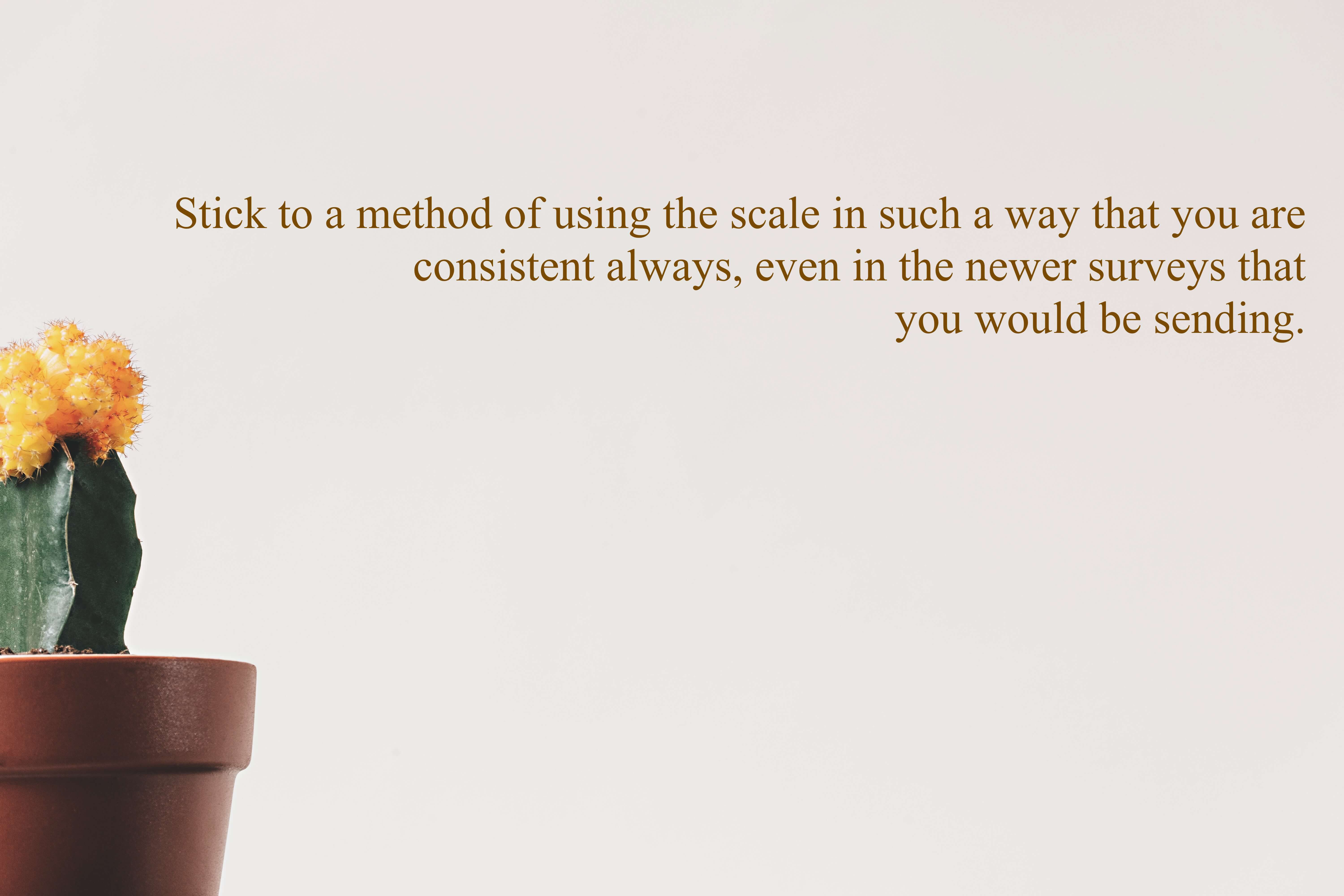 Stick to a method of using the scale in such a way that you are consistent always, even in the newer surveys that you would be sending.