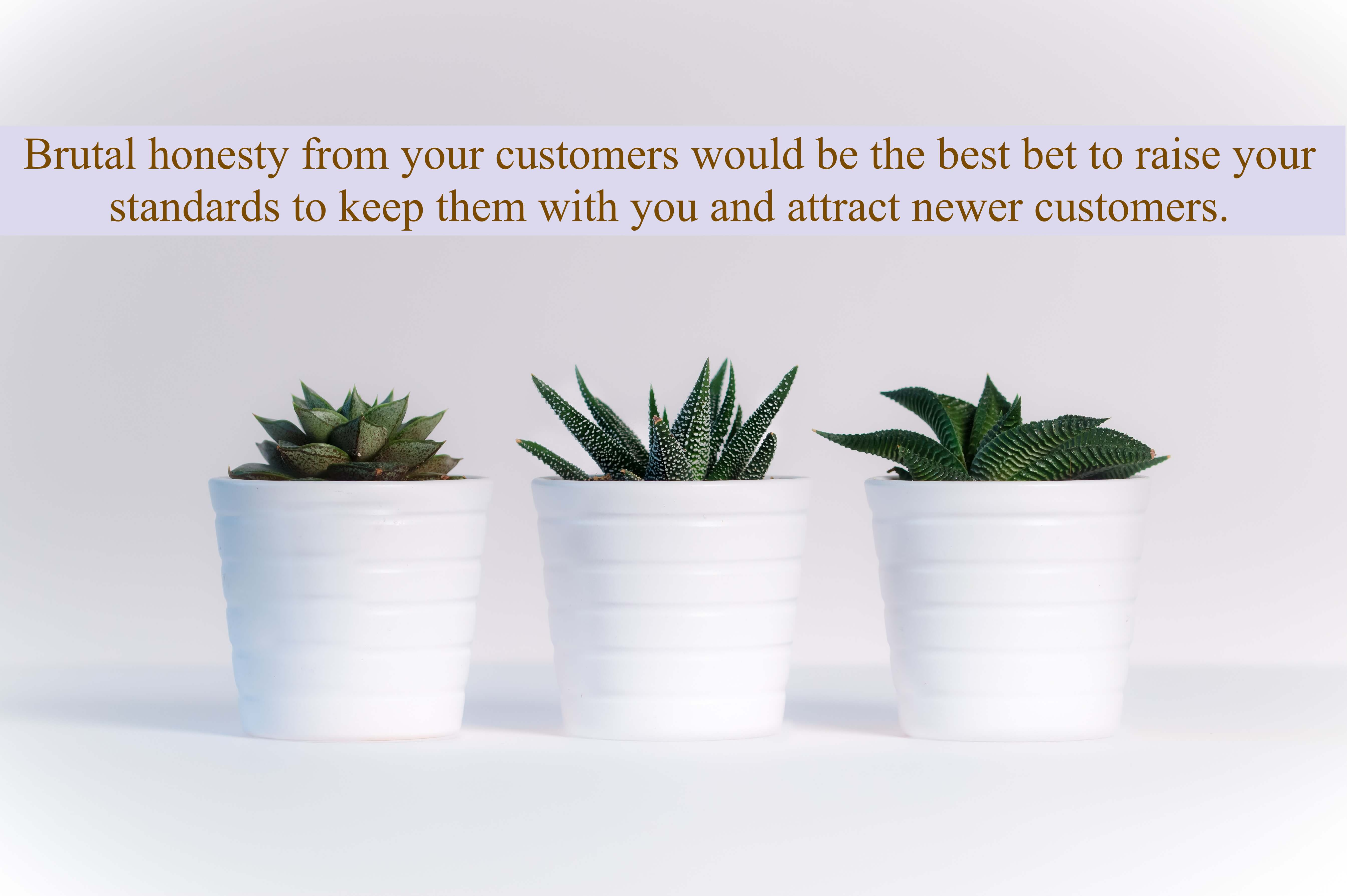 Brutal honesty from your customers would be the best bet to raise your standards to keep them with you and attract newer customers.