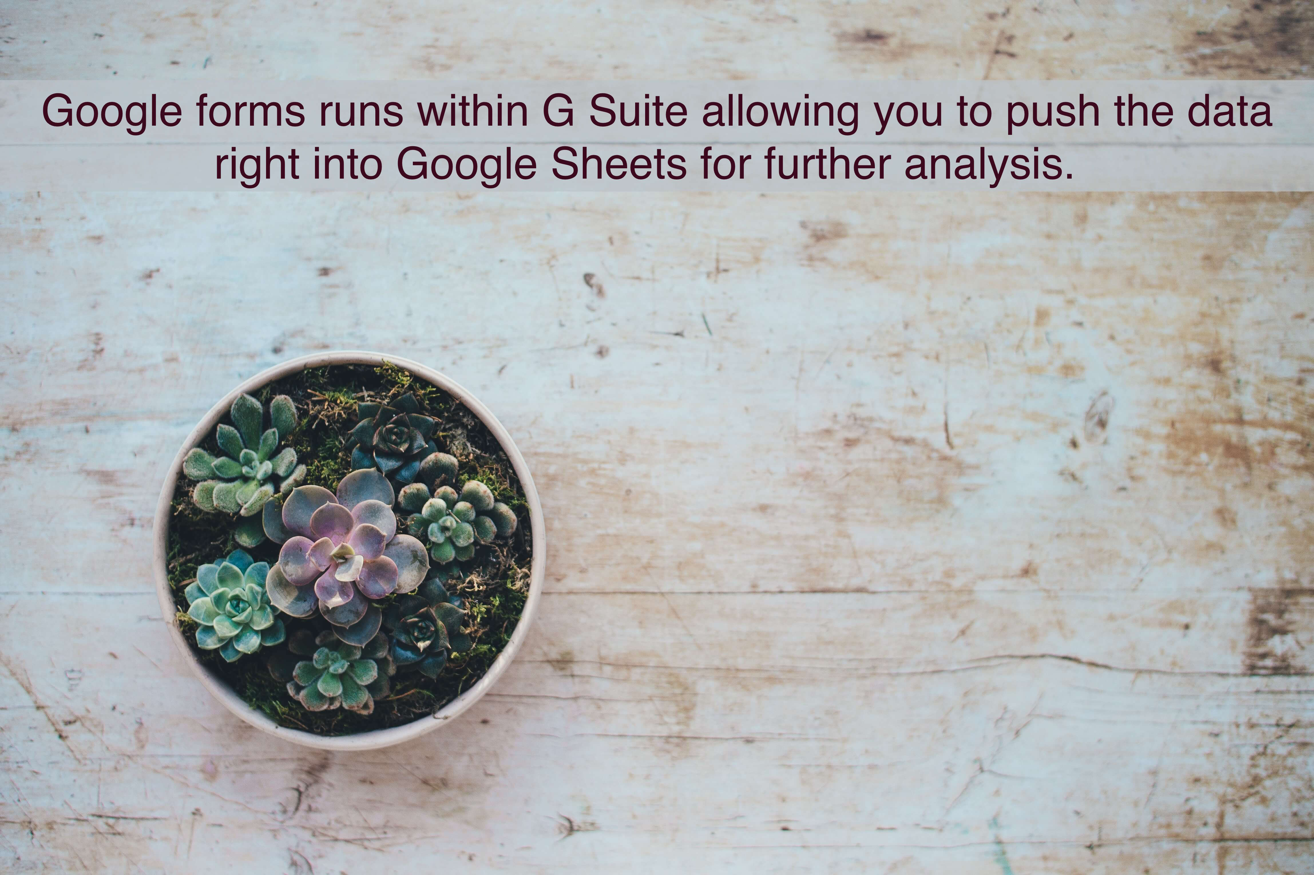 Google forms runs within G Suite allowing you to push the data right into Google Sheets for further analysis.