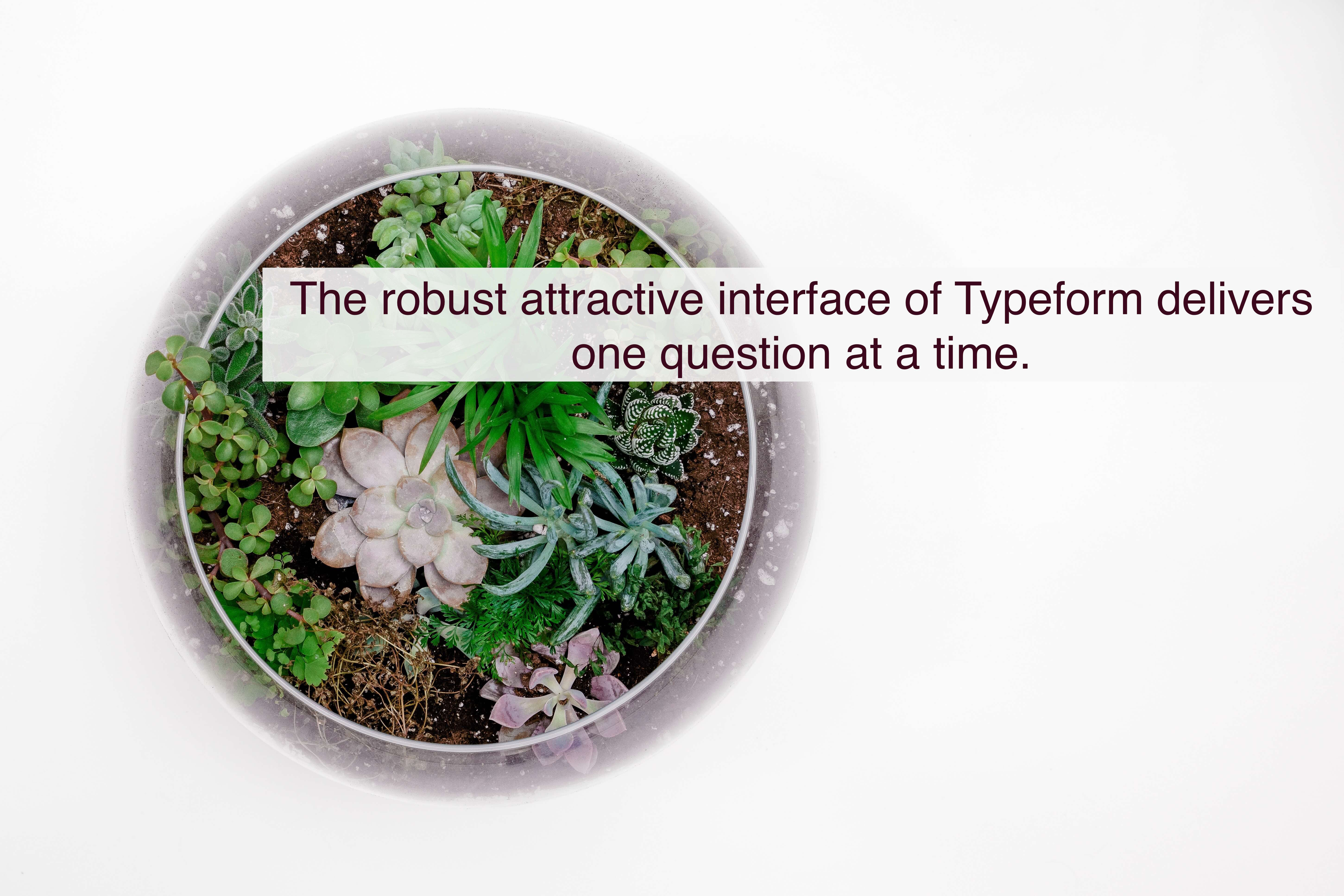 The robust attractive interface of Typeform delivers one question at a time.