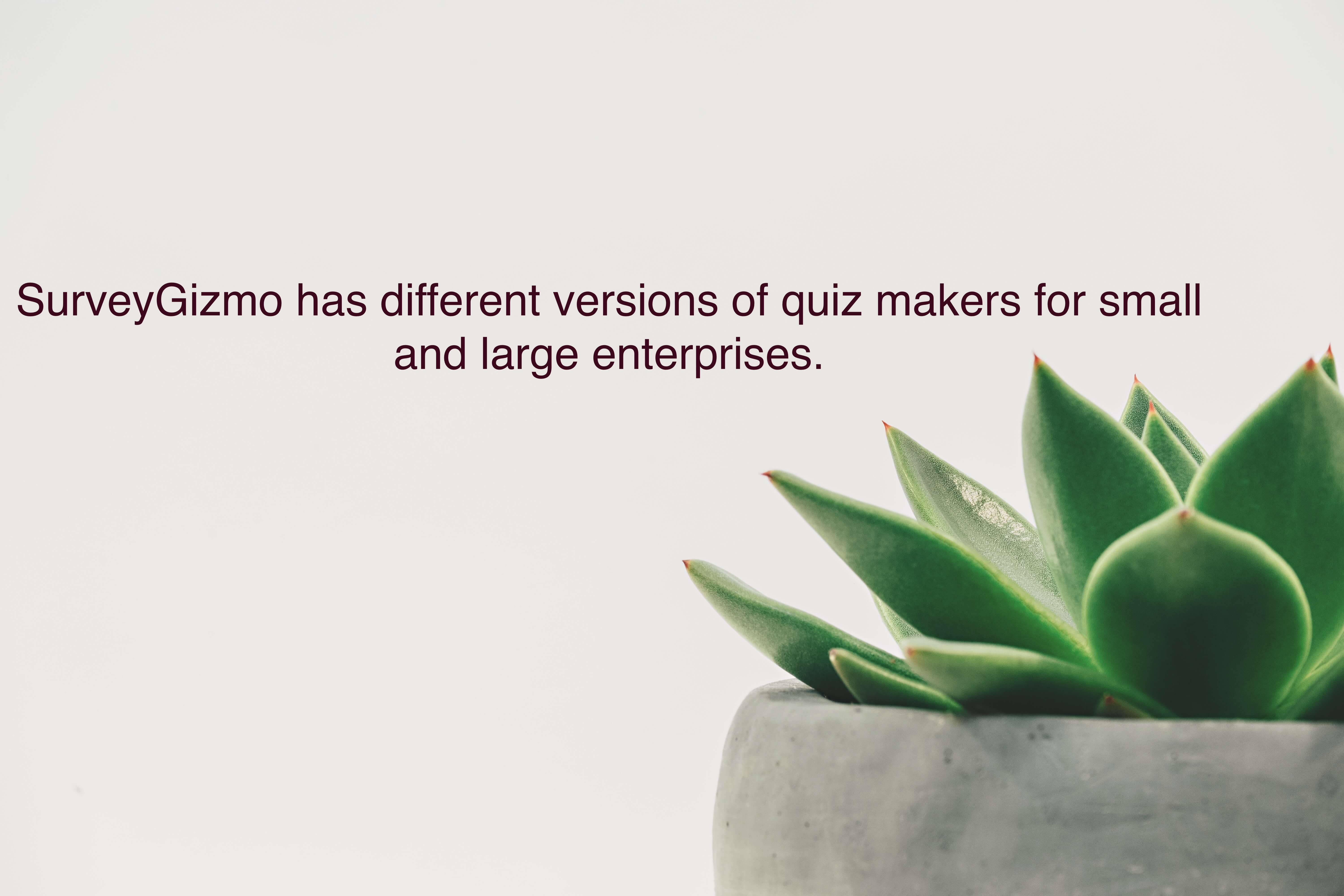 SurveyGizmo has two different versions of quiz makers for small and large enterprises.
