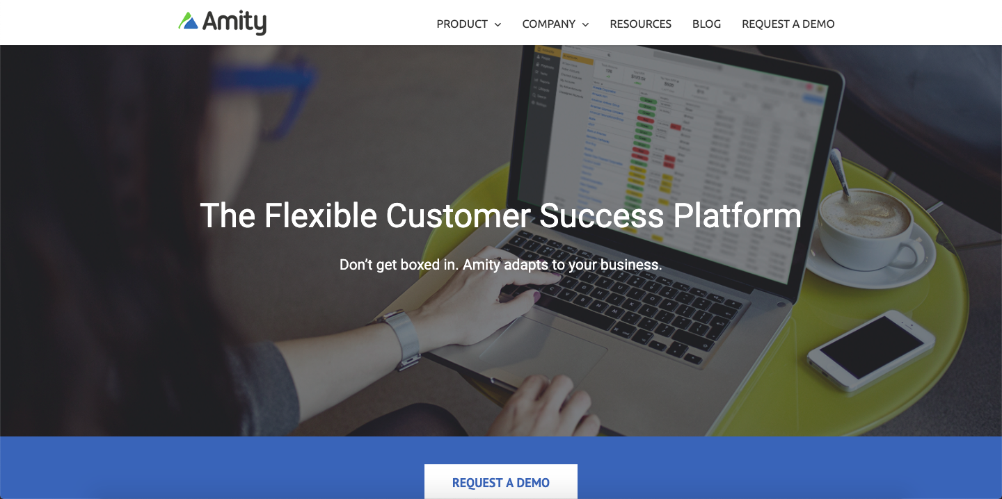 Amity offers features like health score, analytics, customer segmentation, knowledge management and many more.