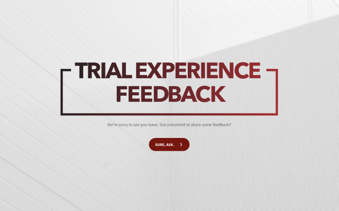 trial feedback form template