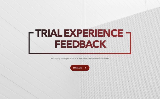 trial feedback form template