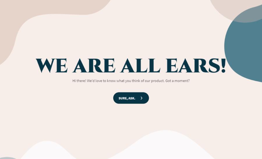 saas user feedback survey template