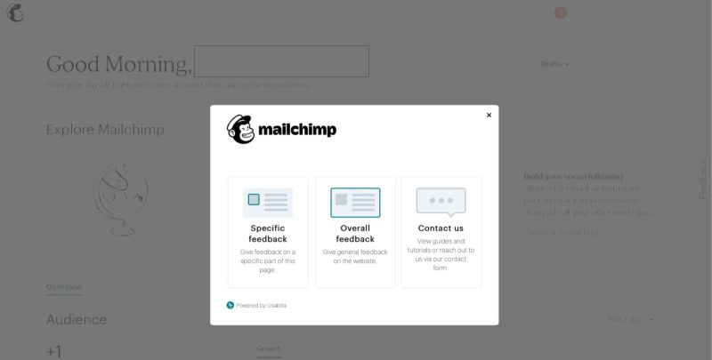 mailchimp feedback form example
