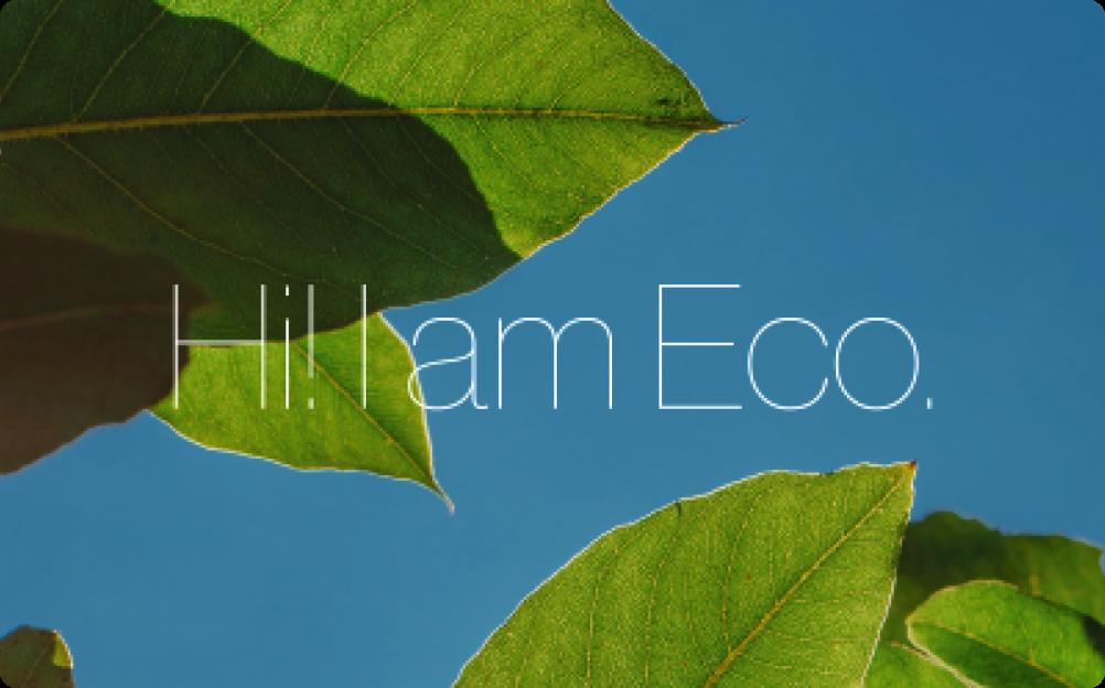 environmental awareness survey template